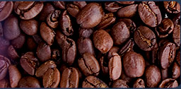 Lyman Kona Coffee Farms - 100% Kona Coffee Organic Estate
