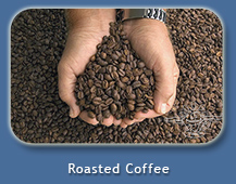 Kona Coffee Freshly Roasted at Mango Sunset Bed & Breakfast in Kona, Hawaii